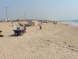 Plaz v Puri